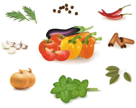 Spice Collection isolated on white background  Vektorgrafik