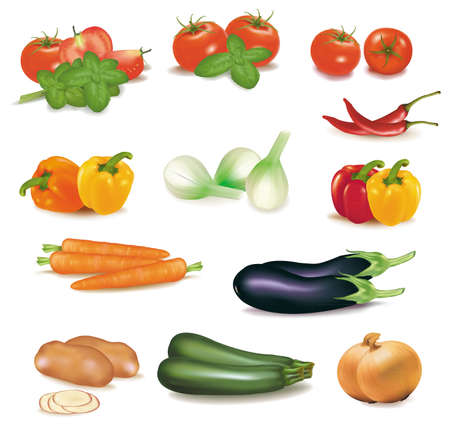 raw potato: The big colorful group of vegetables  Illustration
