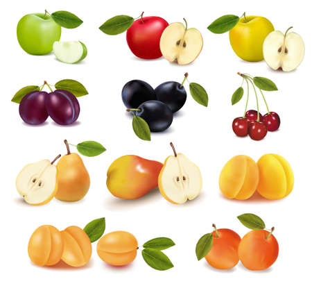 Group with different sorts of fruit.  Vector