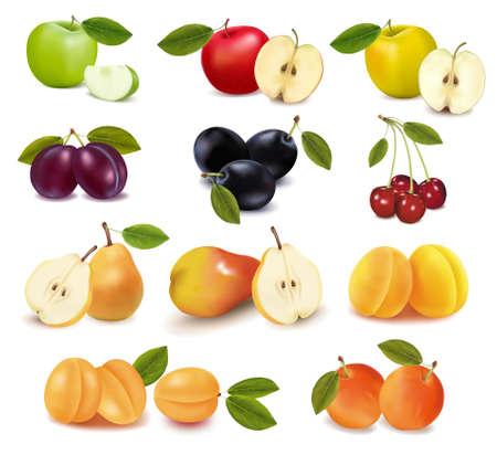 poires: Groupe avec diff�rentes sortes de fruits.