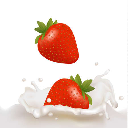 Red strawberry fruits falling into the milky splash. illustration  Vector