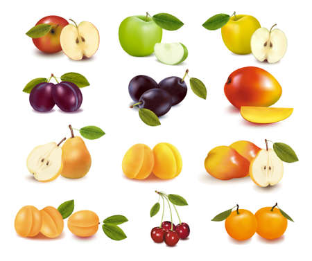 Group with different sorts of fruit. Stock Vector - 9052892