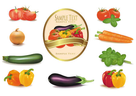 roasting: The big colorful group of vegetables and label. Photo-realistic