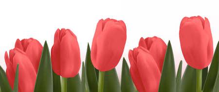 springy: Flower design border.