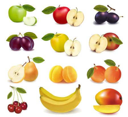 fruit drink: Gruppo con diversi tipi di frutta. Vettore.