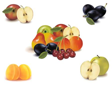 Photo-realistic vector illustration. Big group of different fruit.  Stock Vector - 9108889