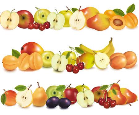 mango fruta: Tres frutas dise�an fronteras aisladas en blanco. Vector.