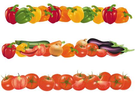 Vegetable design borders isolated on white. Vector.  Stock Vector - 9108917