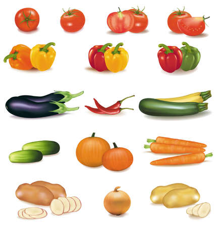 raw potato: The big colorful group of vegetables. Photo-realistic vector.