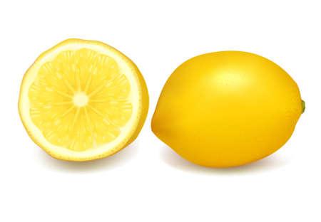 Fresh lemons. Vector illustration.  Vector