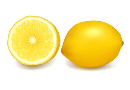 gash: Fresh lemons. Vector illustration.
