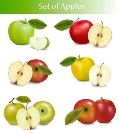apple slice: Big set of fresh apples. Vector.