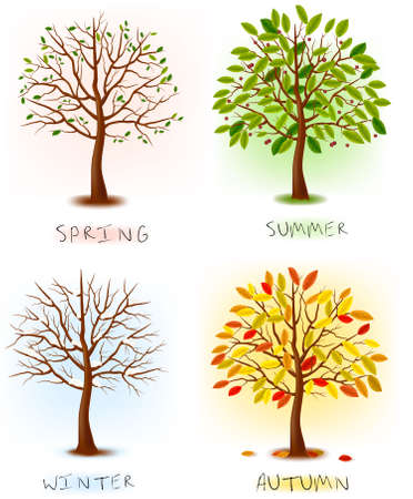 christmas grounds: Four seasons - spring, summer, autumn, winter. Art tree beautiful for your design. Vector illustration.  Illustration