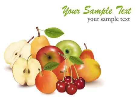 Big group of sweet fruit. Vector.  Vector
