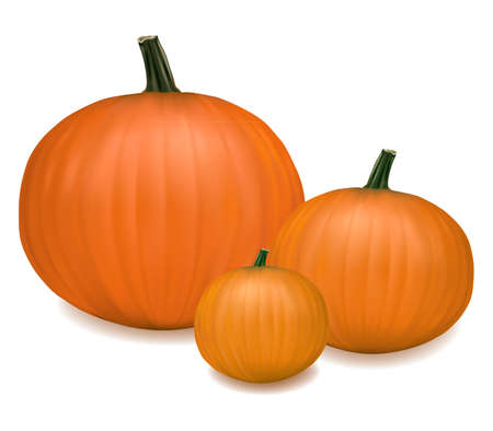 Group of fresh pumpkins. Photo-realistic vector illustration.  Stock Vector - 9214639