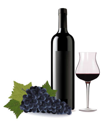 drink bottle: A wine bottle and glass of red wine and some grapes. Vector.  Illustration