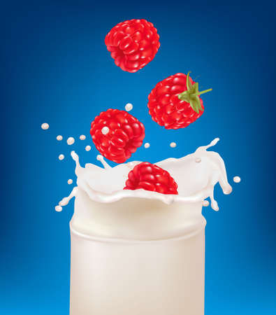 Red raspberry fruits falling into the milk splash. Vector illustration  Stock Vector - 9214744