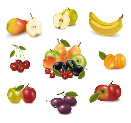 Photo-realistic vector illustration. Big group of different fruit.  Stock Vector - 9214733