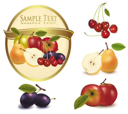 Gold label with different sorts of exotic fruit. Vector.  Vector