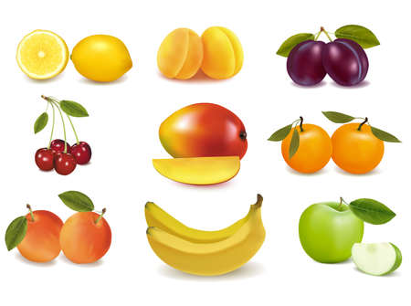Group with different sorts of fruit. Vector.  Vector