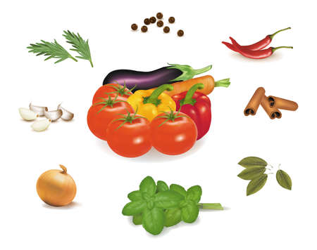 starch: The group of vegetables and spice collection. Photo-realistic vector.  Illustration