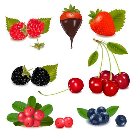black berry: Group of cranberries, blueberries, cherries, raspberries wild strawberries with plant leaves.