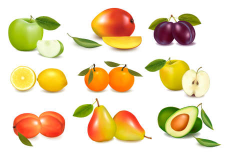 canned fruit: Group with different sorts of fruit. Illustration