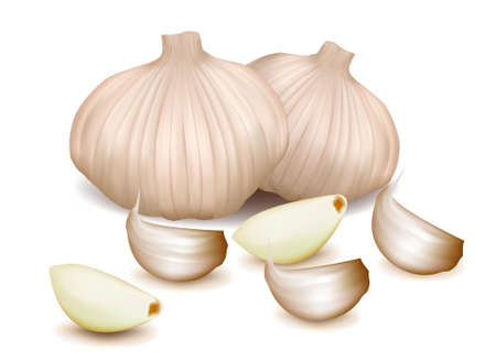fresh garlic: Garlic with clove.