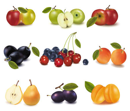 rinds: Group of different tasty ripe fruit. Vector.