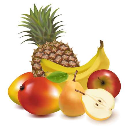 写実的なベクトル イラスト。エキゾチックなフルーツの大きいグループ。