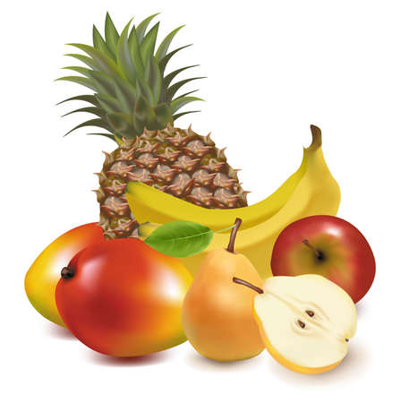 Photo-realistic vector illustration. Big group of exotic fruit.  Vector