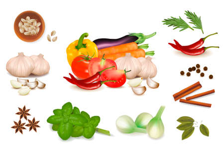 onion slice: The big colorful group of vegetables and spice. Photo-realistic vector.