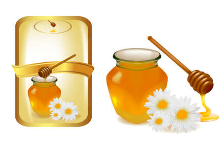 dipper: Background with honey and wood stick and label. Vector illustration.