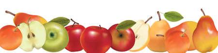 green apple slice: Fruit design border isolated on white. Vector.  Illustration