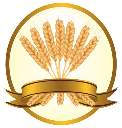 Photo-realistic vector illustration. Ears of wheat and ribbons.