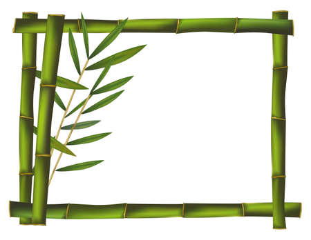 bamboo leaves: Green bamboo frame made of stems. Vector.