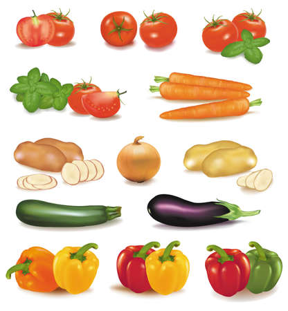 he big colorful group of vegetables. Photo-realistic vector.  Stock Vector - 9538591