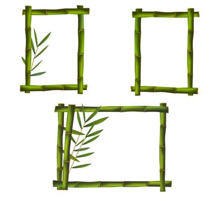 bamboo stick: Green bamboo frames. Vector.