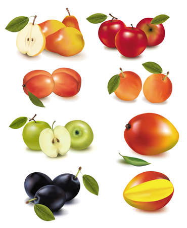 Photo-realistic illustration. Big group of ripe fruit.  Vector
