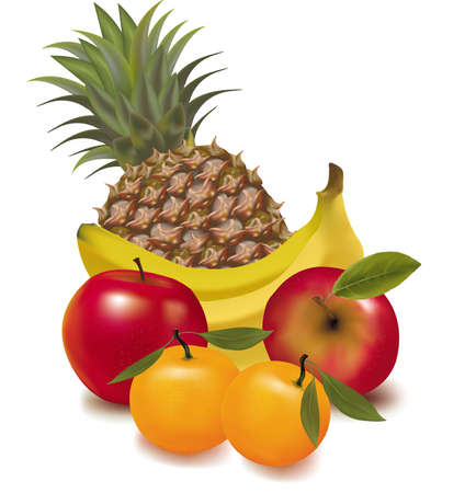 ananas: Photo-realistic vector illustration. Big group of exotic fruit.