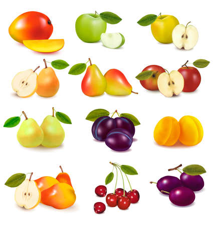 packaged: Set with different sorts of fruit. Vector.