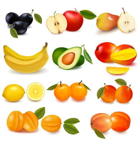 mangoes: Group with different sorts of fruit. Vector.  Illustration