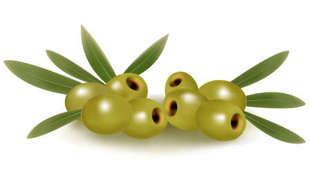 Green olives with leaves.  Ilustrace