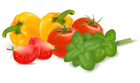 the big colorful group of vegetables. photo-realistic Stock Vector - 9594890