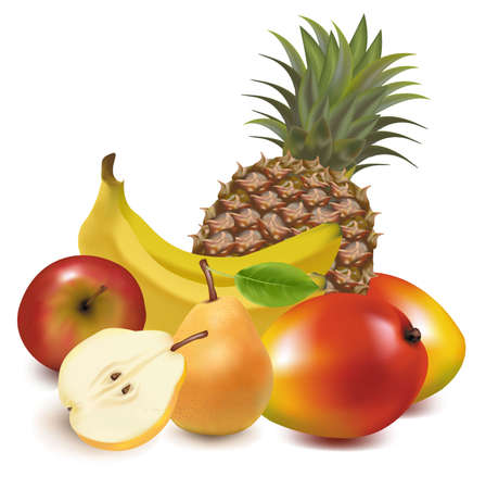 Photo-realistic illustration. Big group of exotic fruit.  Vector