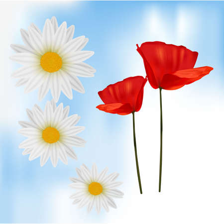 Photo-realistic illustration. Group of flower  Vector