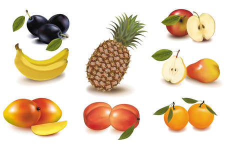 Photo-realistic vector illustration. Big group of exotic fruit.  Stock Vector - 9635403