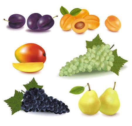 apricots: Super big group of fruit. Photo-realistic vector illustration.  Illustration