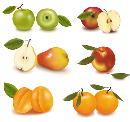 apple slice: Photo-realistic vector illustration. Pears, apples, peaches and mango.  Illustration