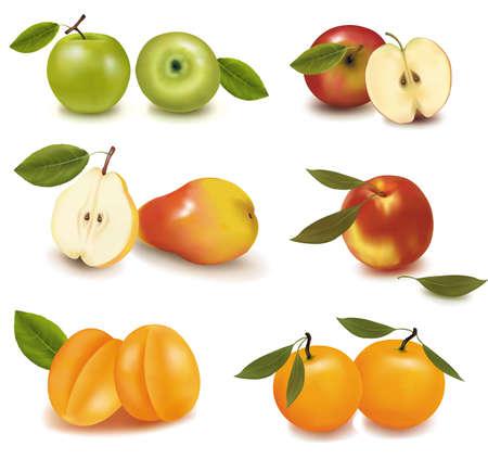 mango slice: Photo-realistic vector illustration. Pears, apples, peaches and mango.  Illustration